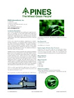 Pines International